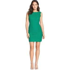 Arianna Papell Emerald Boatneck Lace Sheath Dress